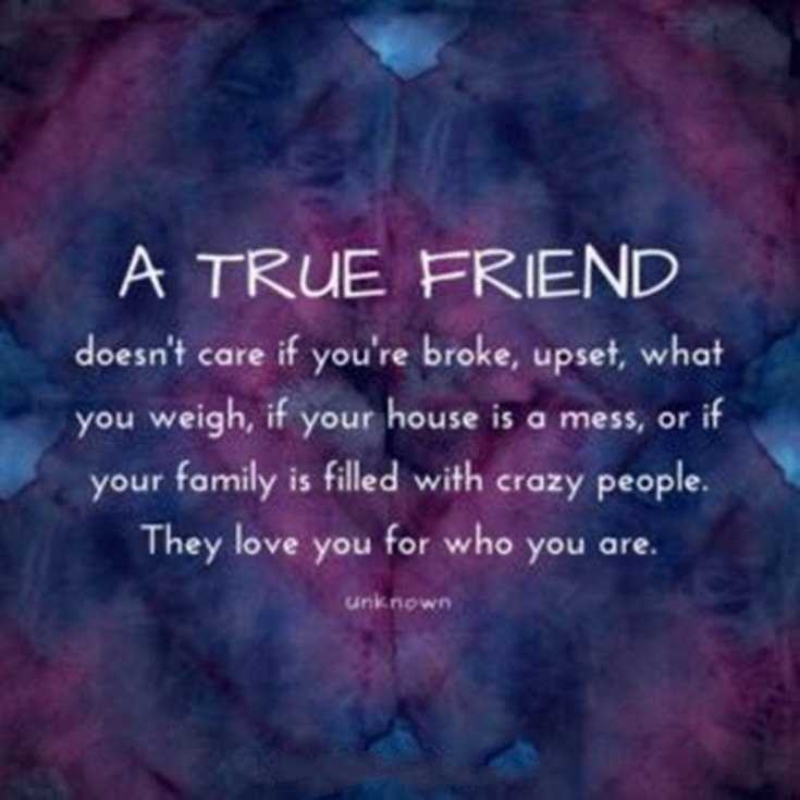 115 Best Friend Quotes Short Quotes About True Friends 79