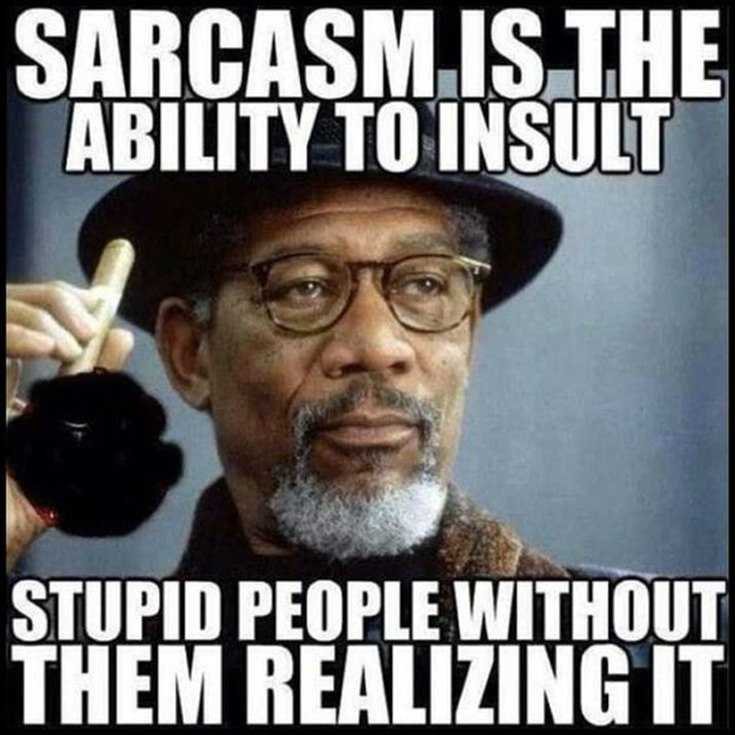 155 Awesome Sarcastic Quotes And Funny Sarcasm Sayings 25