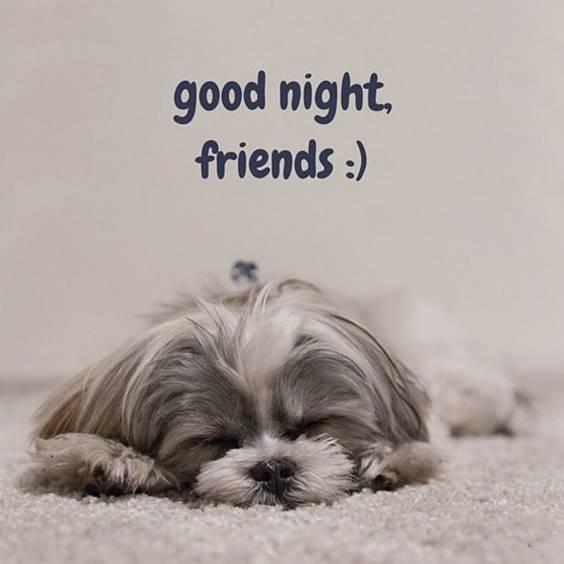 flirty good night message for boyfriend 1