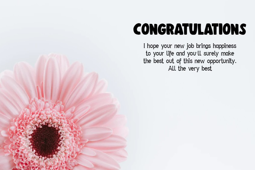 Congratulations Messages for Job What to Write in a Congratulations Card