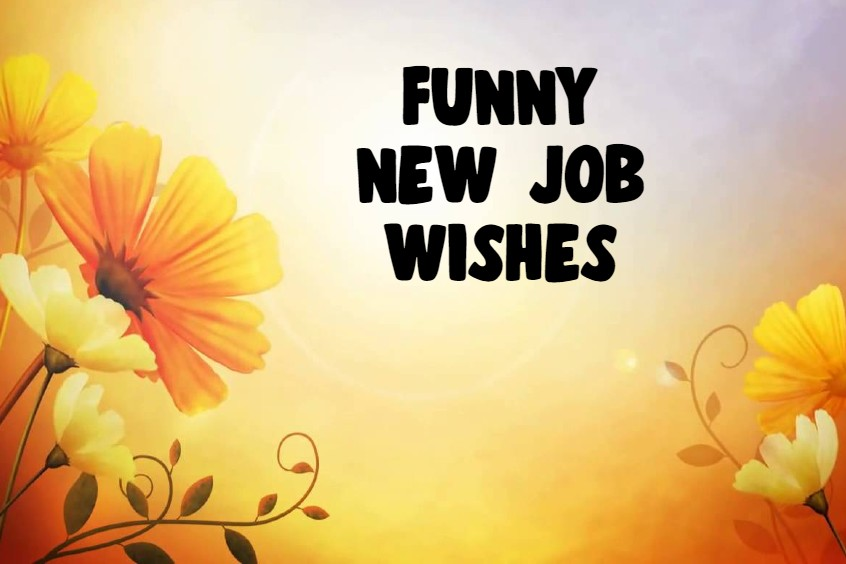 Funny New Job Wishes Messages What to Write in a Congratulations Card