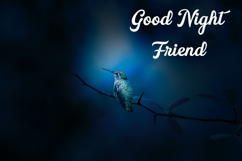Good Night Messages For Friends Pictures And Quotes for Goodnight
