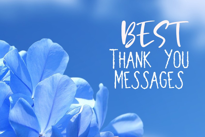 Heartfelt Thank You Messages With Images Appreciation Quotes On Thankfulness