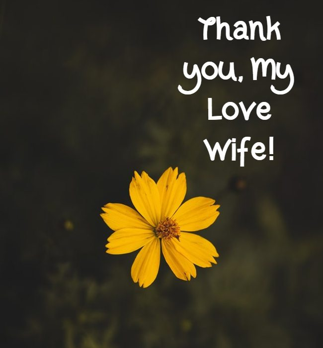 Thank you wife msg with images