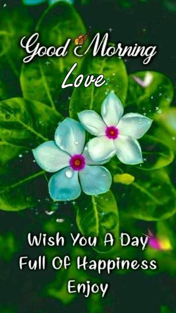 good night my sweetheart 1