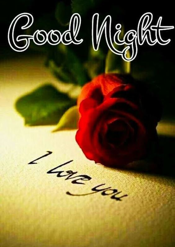 goodnight beautiful i love you