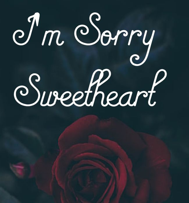 apology quotes for wife