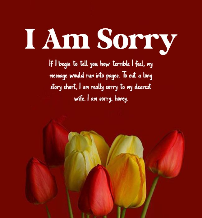 i m sorry paragraphs for wife