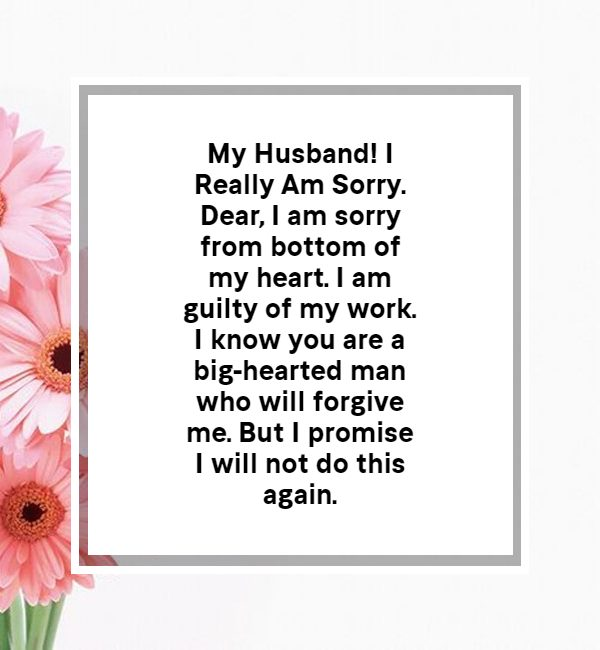 sorry msg for husband