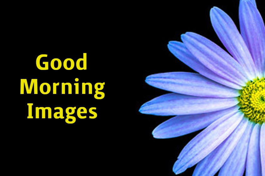 Special Good Morning Images With wishes Pictures And Quotes