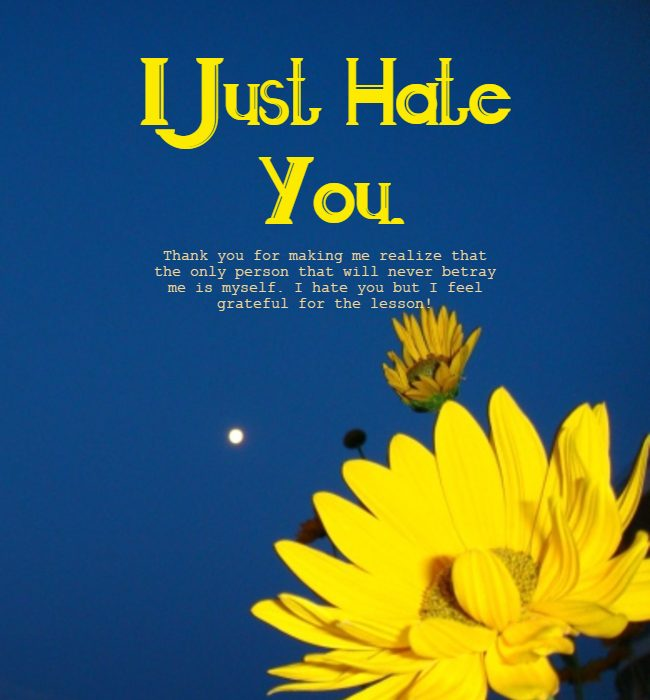 i hate you quotes